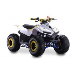 QUAD NEW BIG FOOT 110CC LEM MOTORS