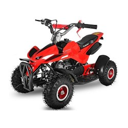 Mini quad Spider 50cc 2T